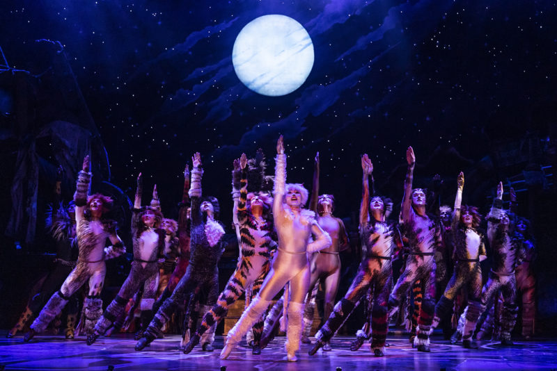 The company of the 2021-2022 national tour of CATS (Photo By Matthew Murphy, Murphymade) v3